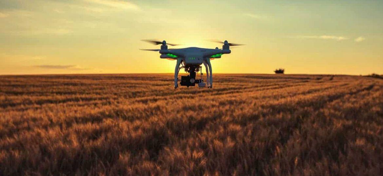 Drones campo